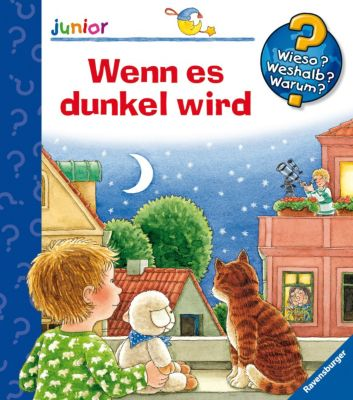 Buch - WWW junior Wenn es dunkel wird