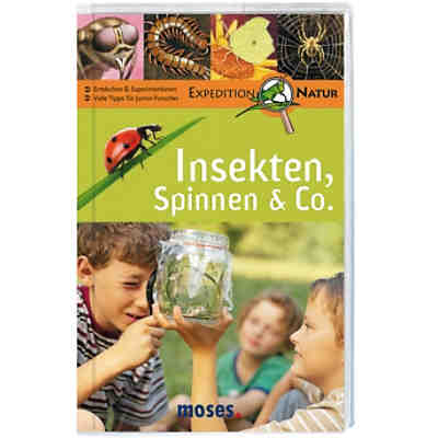Expedition Natur: Insekten, Spinnen & Co.