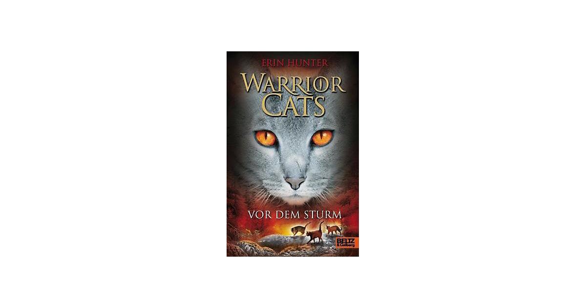 Warrior Cats: Vor dem Sturm, Band 4