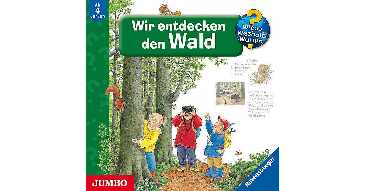 CD Wieso Weshalb Warum: Wir entdecken den Wald Hörbuch
