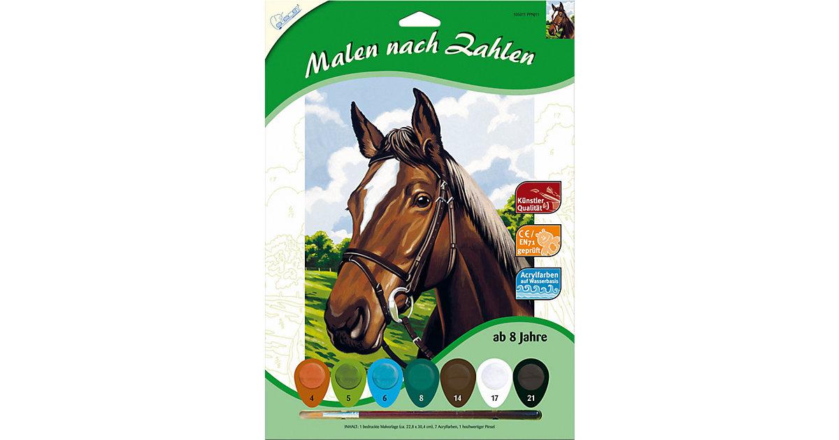 Malen nach Zahlen - Pferdeporträt