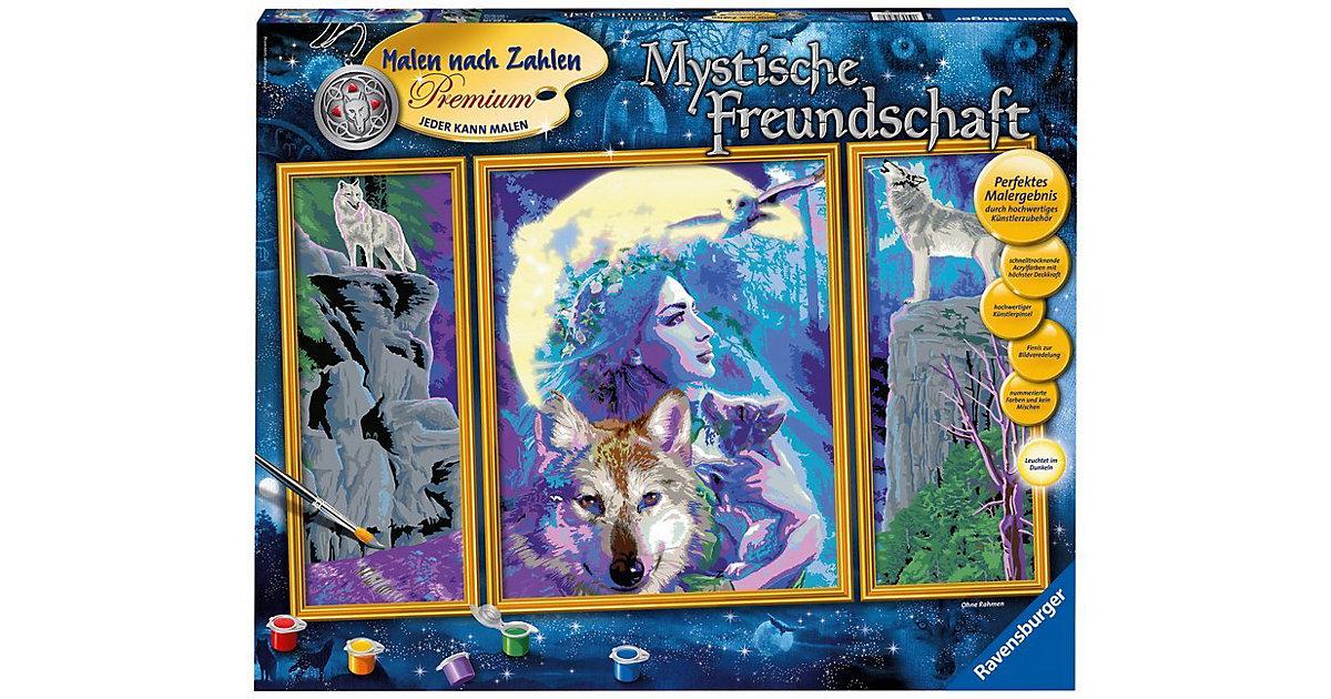 Malen nach Zahlen Premium - Mystische Freundsch...
