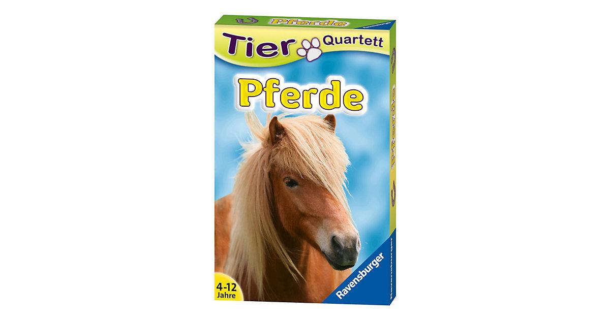 Tier-Quartette: Pferde