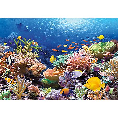 """Пазл """"Коралловый риф"""", 1000 деталей, Castorland от Castorland"""