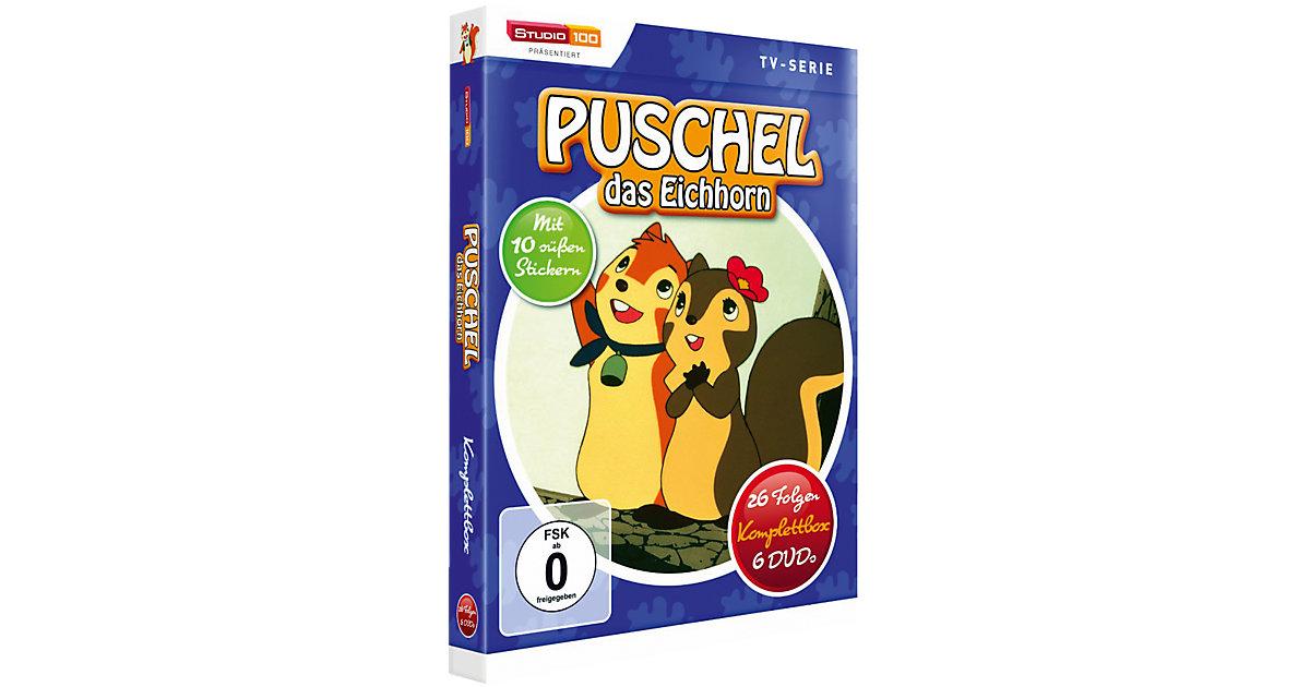 DVD Puschel das Eichhorn DVD 1-6 (Komplettbox)