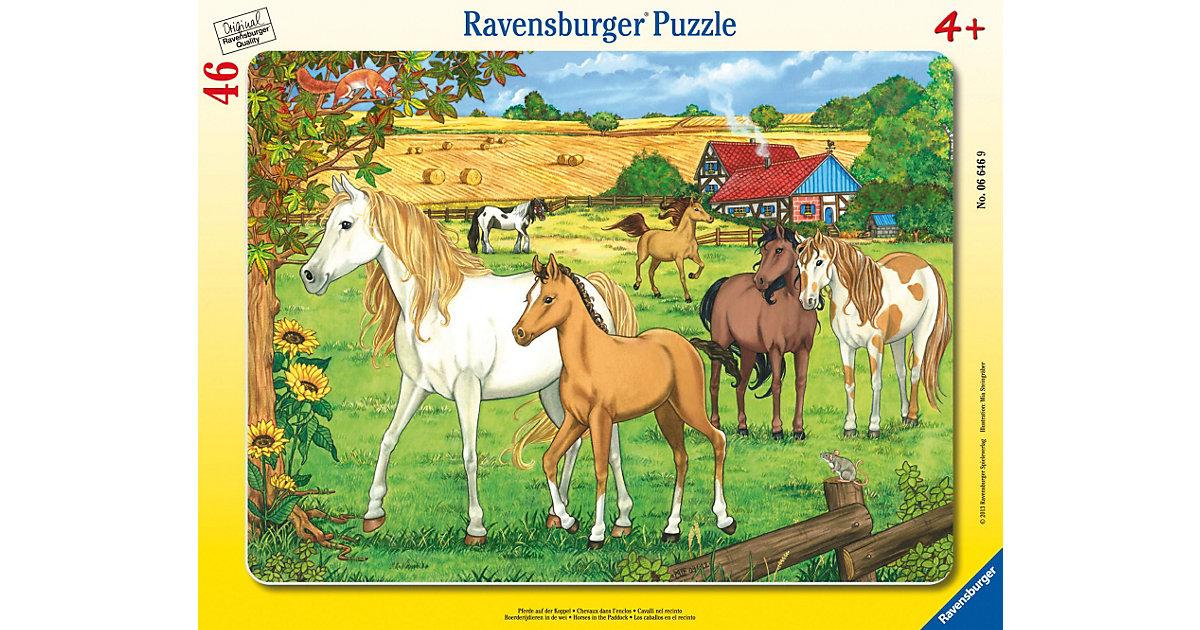 Puzzle Pferde auf der Koppel 46 Teile