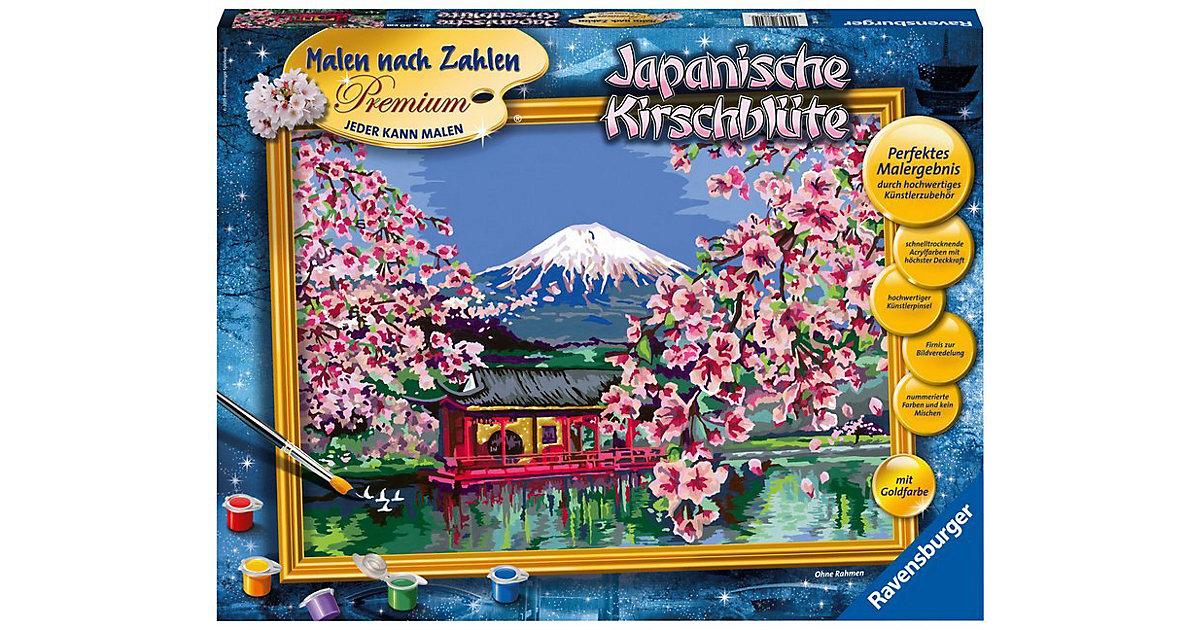 Malen nach Zahlen Premium - Japanische Kirschbl...
