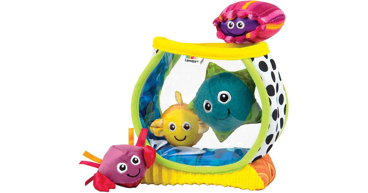 Mein erstes Aquarium