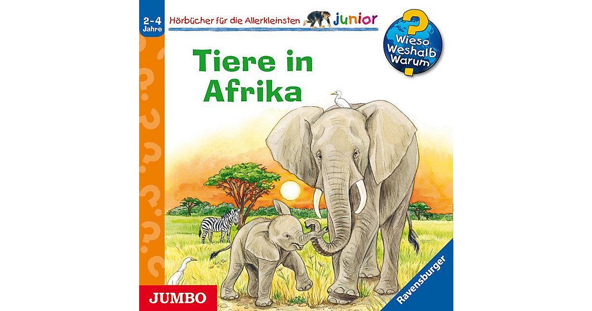 CD Wieso? Weshalb? Warum? Junior - Tiere in Afrika Hörbuch