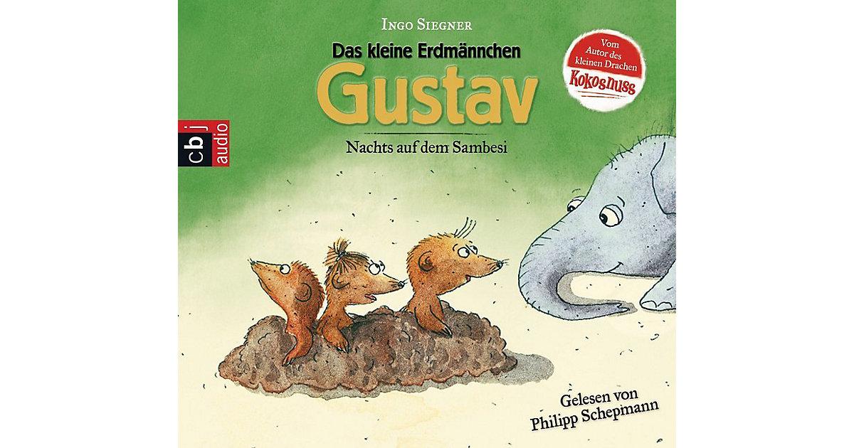 Das kleine Erdmännchen Gustav: Nachts auf dem S...