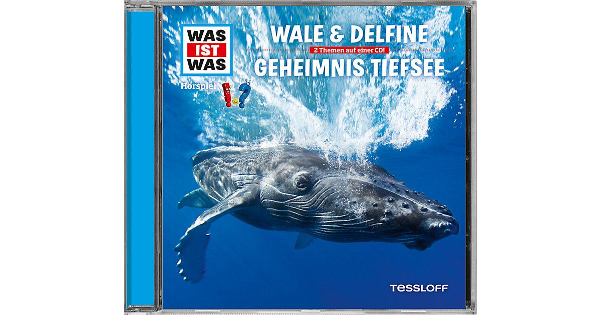 CD Was ist Was - Wale & Delfine / Geheimnisse der Tiefsee Hörbuch