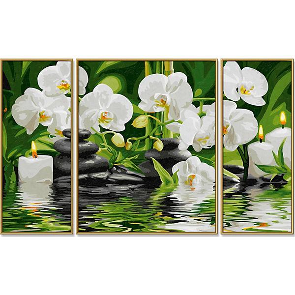"""Картина-триптих по номерам Schipper """"Цветы Wellness-Oase"""", 50х80 см"""