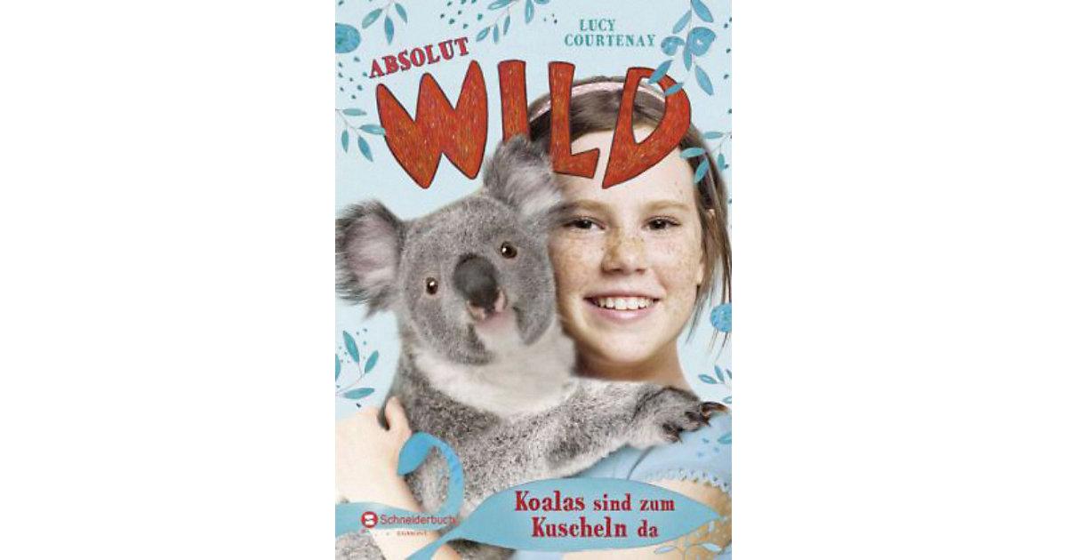 Absolut WILD: Koalas sind zum Kuscheln da, Band 4