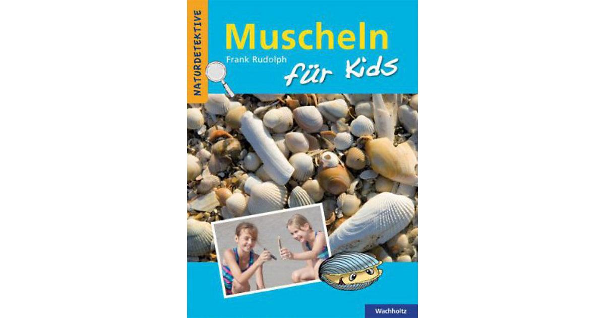 Muscheln Kids Kinder