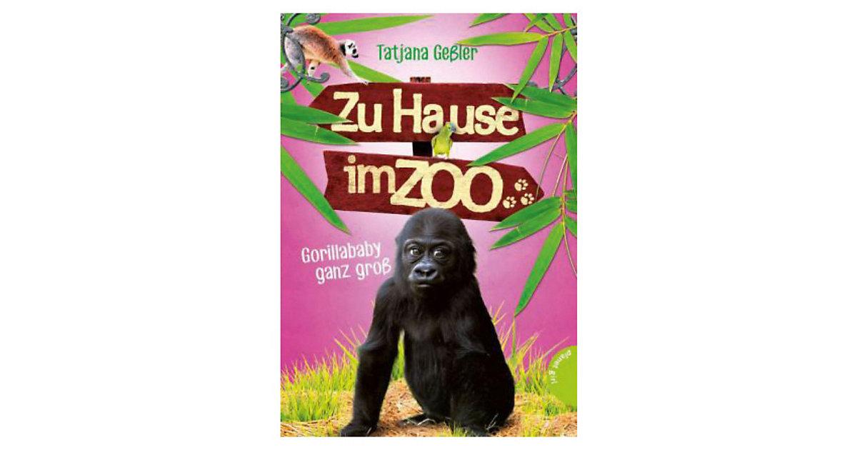 Zu Hause im Zoo: Gorillababy ganz groß