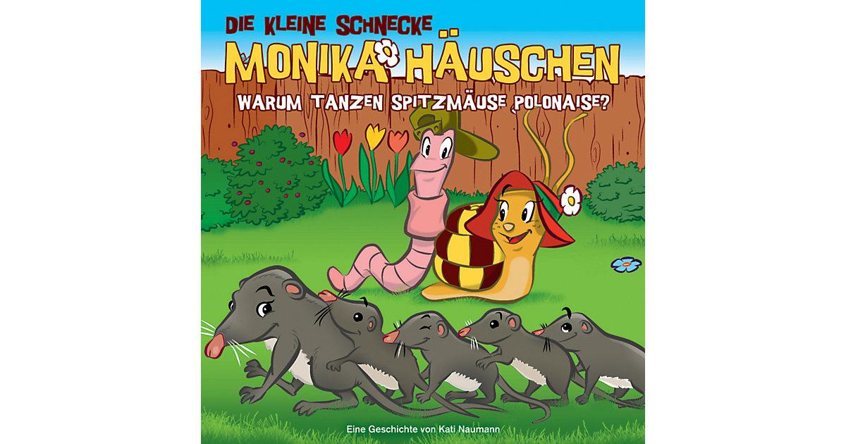 CD Die Kleine Schnecke Monika Häuschen 36 - Warum Tanzen Spitzmäuse Polonaise? Hörbuch
