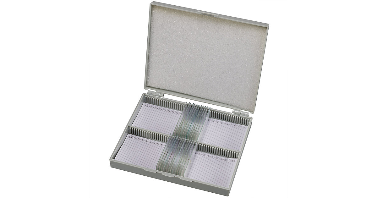 Dauerpräparate 25 St./Box - Biologie