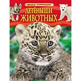 """Детская энциклопедия """"Детеныши животных"""""""