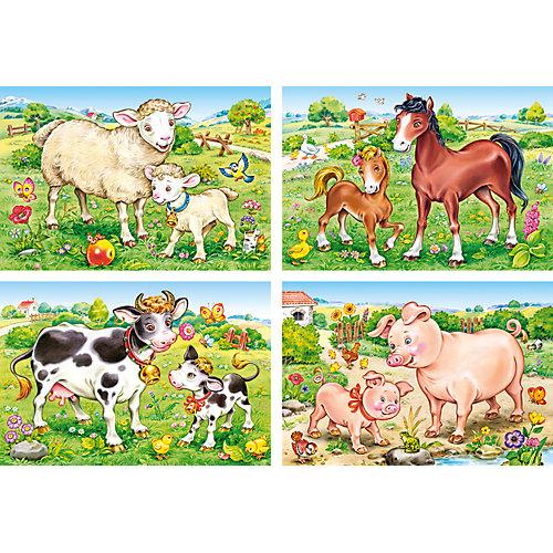 """Пазлы """"Домашние животные"""", 8*12*15*20 деталей, Castorland от Castorland"""