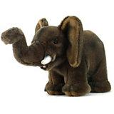 """Мягкая игрушка Hansa """"Экзотические животные"""" Слонёнок, 15 см"""
