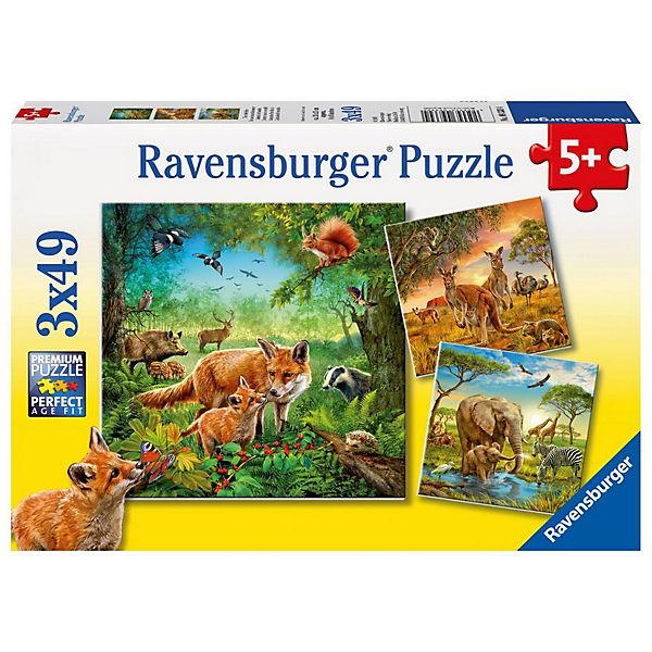 3x49 Teile Tiere der Erde, Ravensburger