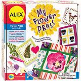 Набор для создания гербариев и открыток, ALEX