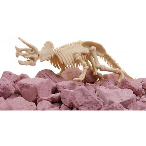 Скелет Трицератопса, 4М от 4M