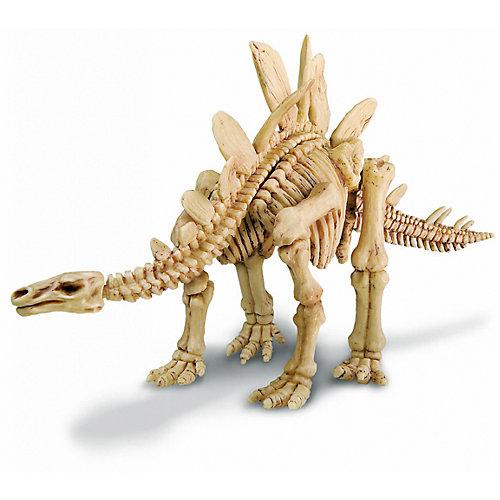 Скелет Стегозавра, 4М от 4M