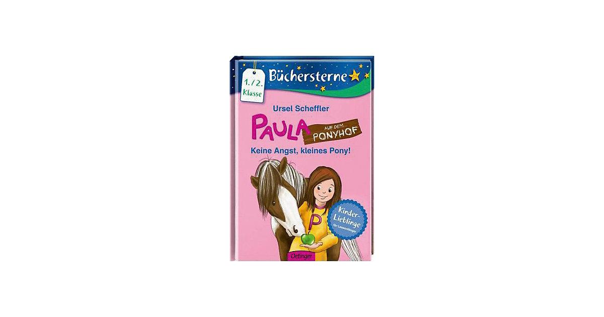 Paula auf dem Ponyhof: Keine Angst, kleines Pon...