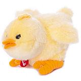 Мягкая игрушка Trudi Цыплёнок, 15 см