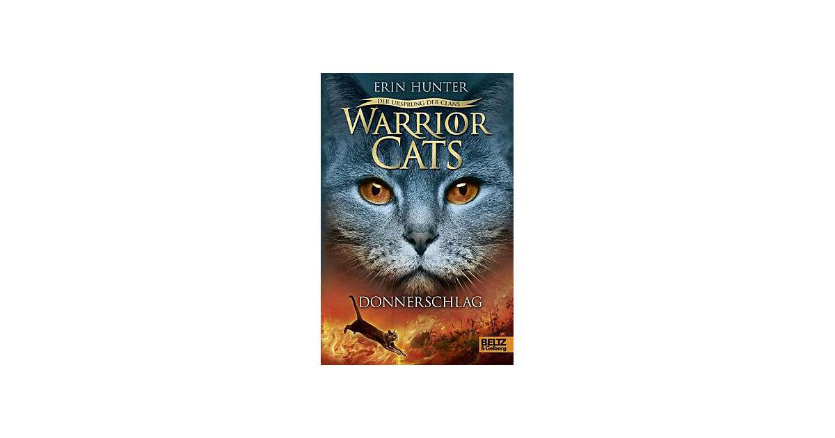 Warrior Cats - Der Ursprung der Clans: Donnersc...