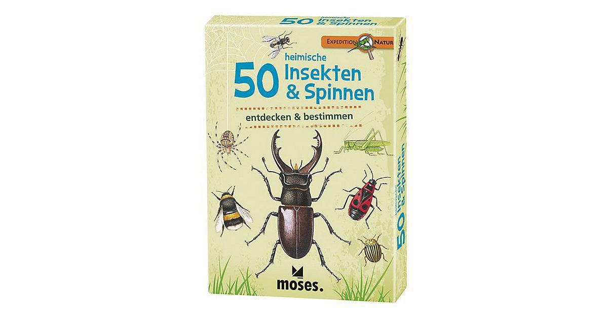 Expedition Natur: 50 heimische Insekten & Spinn...