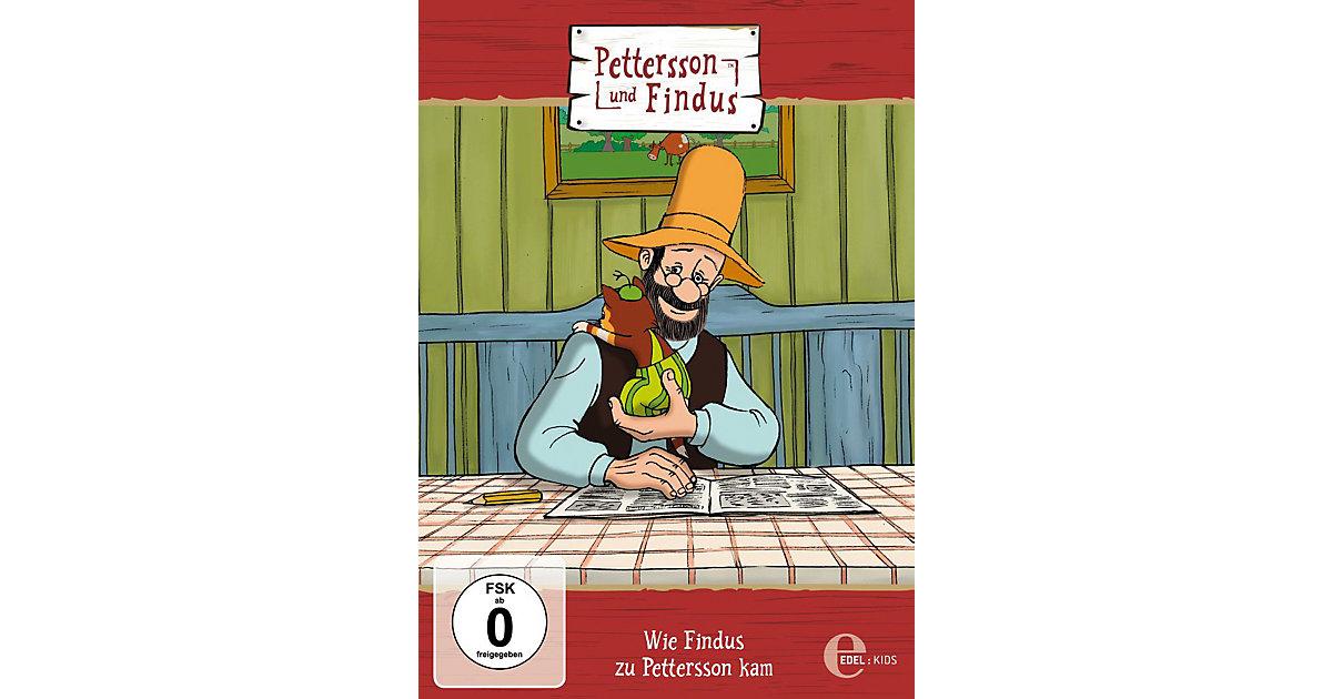 DVD Pettersson und Findus 05 - Wie Findus zu Pettersson kam Hörbuch