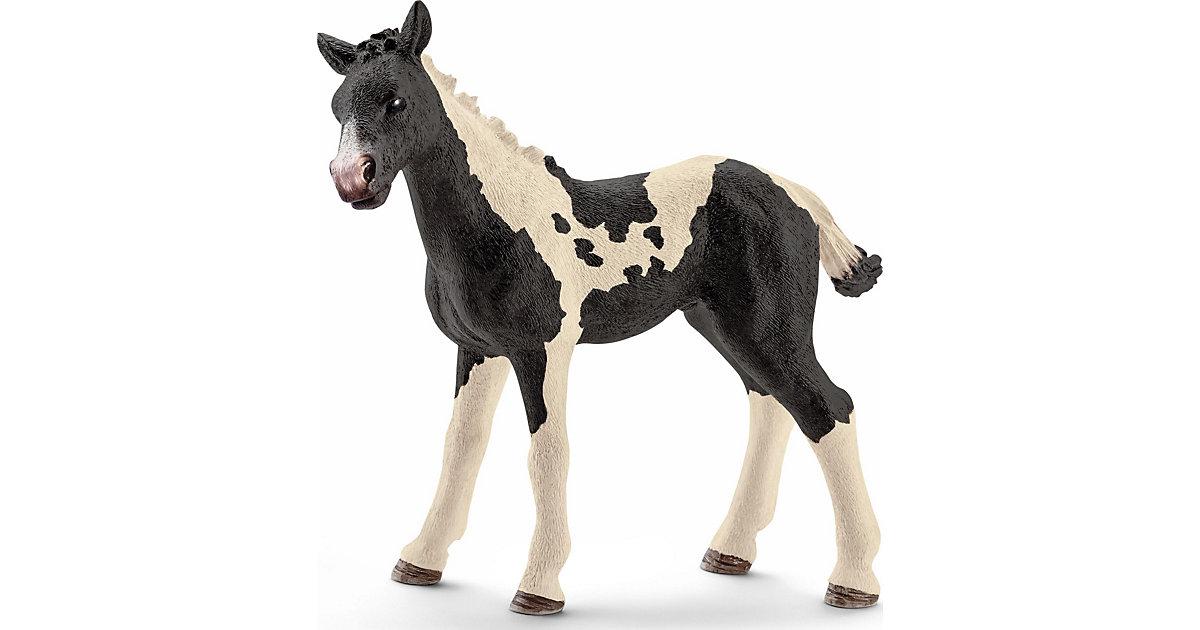 Schleich 13803 Horse Club: Pinto Fohlen