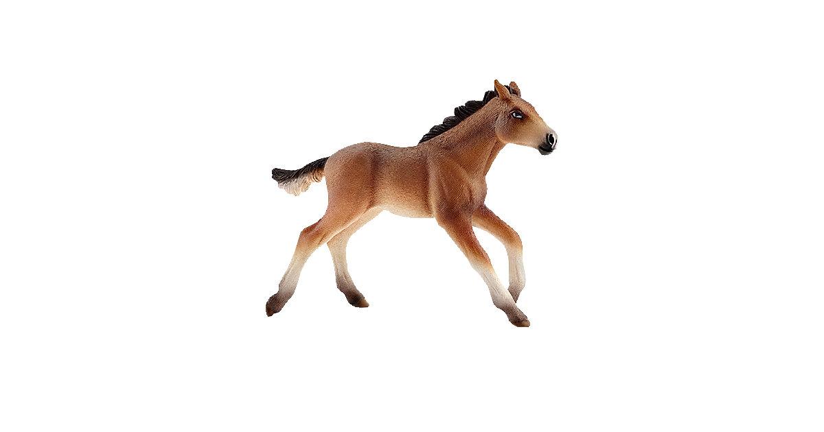 Schleich 13807 Horse Club: Mustang Fohlen