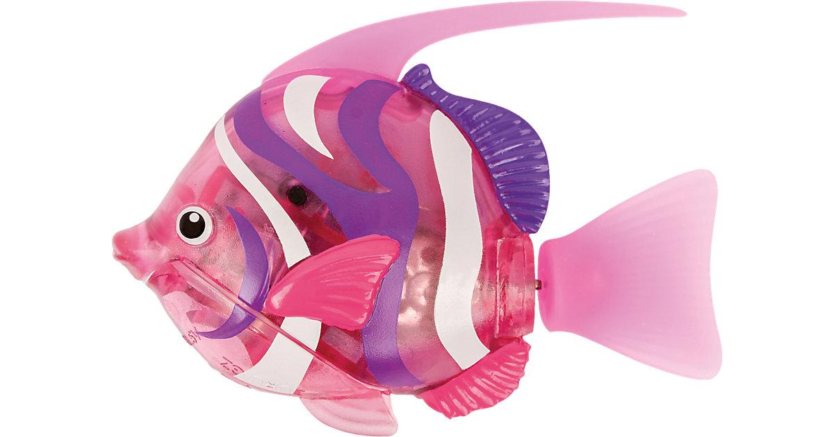 Robo Fish Tiefsee Wimplefish Pink