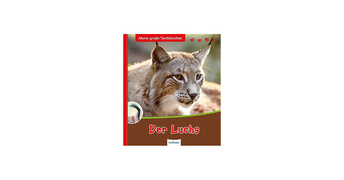 Meine große Tierbibliothek: Der Luchs