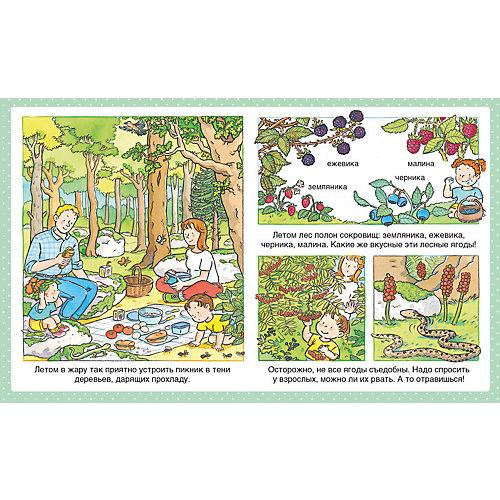 """Энциклопедия для малышей """"В лесу"""" от Махаон"""