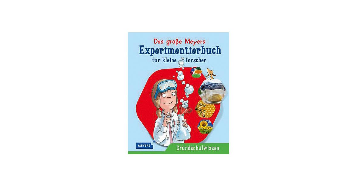 Das große Meyers Experimentierbuch kleine Forsc...