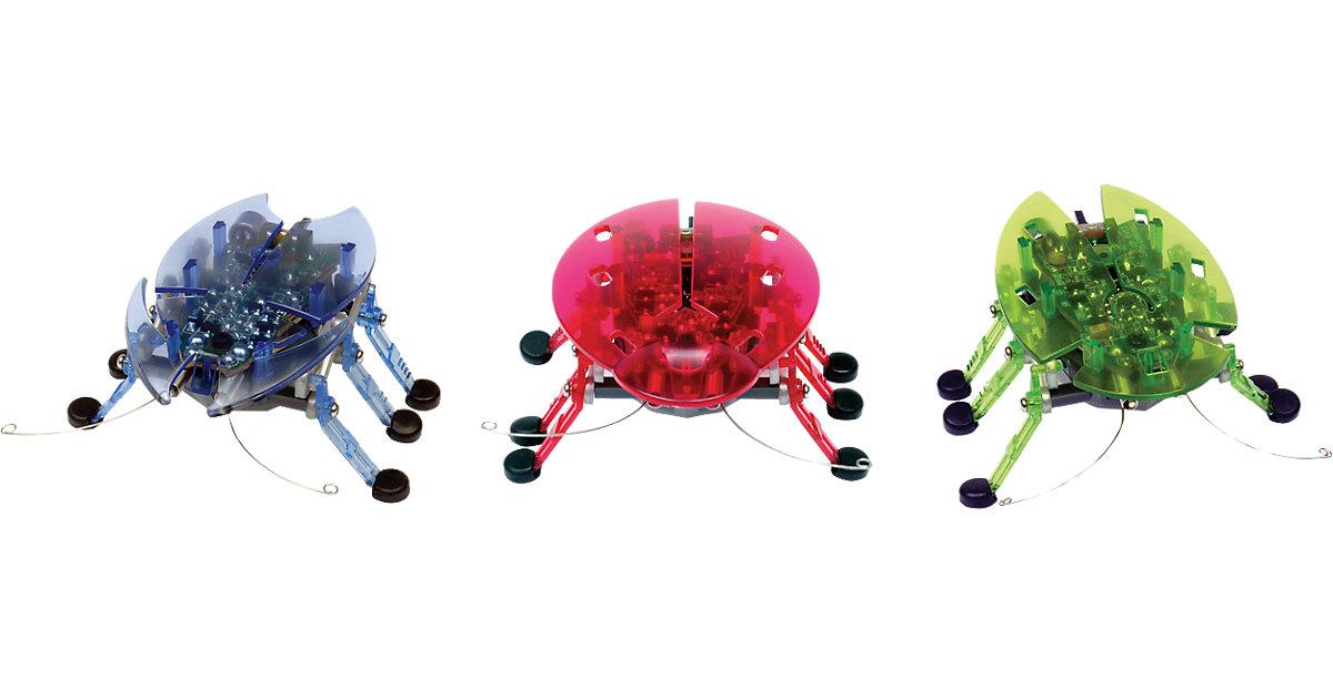 Hexbug Beetle - krabbelnder Käfer
