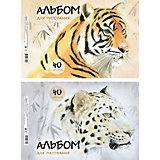 """Альбом для рисования """"Wild Cats"""", А4, 40 л."""