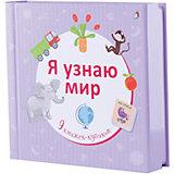 """9 книжек-кубиков """"Я узнаю мир"""""""