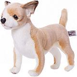 """Мягкая игрушка Hansa """"Собаки"""" Чихуахуа, 27 см"""