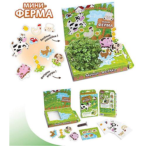 """Набор для выращивания """"Мини-ферма"""" Happy Plant от Бумбарам"""