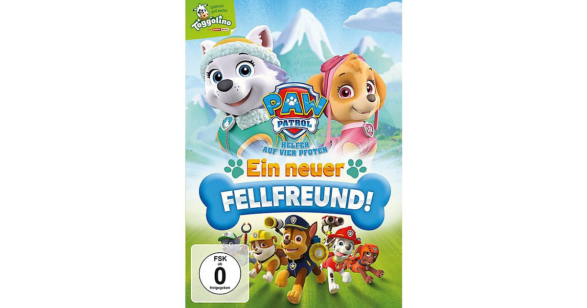 DVD Paw Patrol - Ein neuer Fellfreund