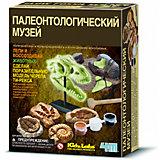"""Набор для раскопок 4М """"Палеонтологический музей"""""""