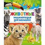 """Энциклопедия для малышей """"Животные"""""""