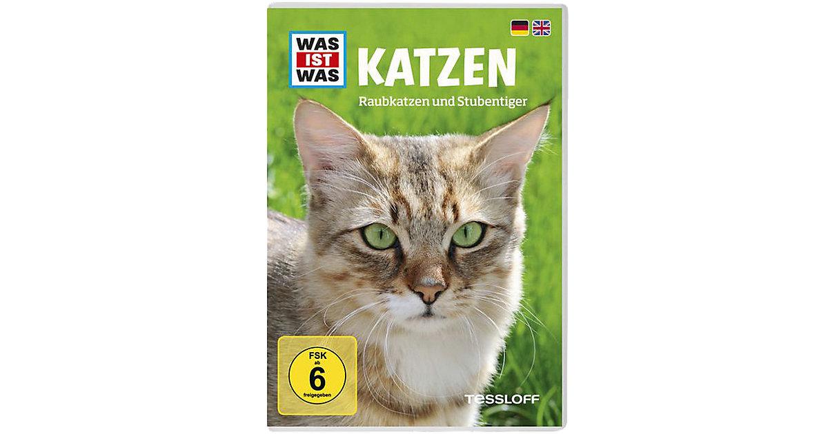 DVD Was ist was - Katzen