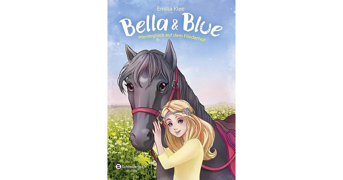 Bella & Blue: Pferdeglück auf dem Fliederhof, Band 1