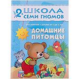 """Третий год обучения """"Домашние питомцы"""", Школа Семи Гномов"""